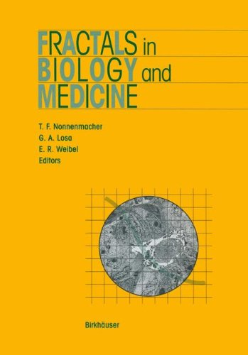 Fractals in Biology and Medicine (Mathematics and Biosciences in Interaction)