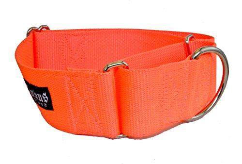 1 1/2 Inch Width Martingale Dog Collars - Heavy Duty Nylon (1.5
