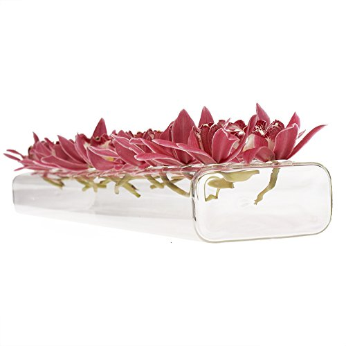- Chive - Hudson 24 Hole Flute, 24 Inches Long Rectangle Unique Clear Glass Bud Flower Vase, Low Laying Elegant Centerpiece, Home Decor Weddings (Large)