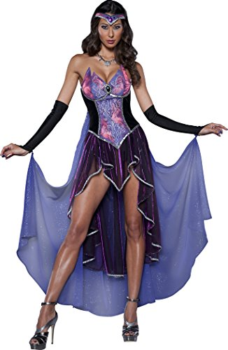 Seductive Costumes (InCharacter Costumes Women's Seductive Sorceress Costume, Purple/Pink, Large)