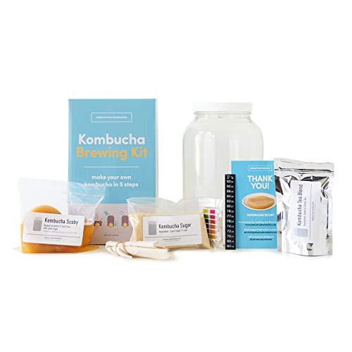 Kombucha Brewing Kit with Kombucha Scoby (Complete)