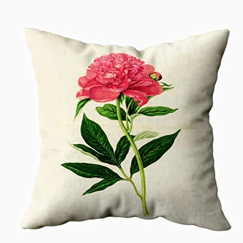 (Shorping Zippered Pillow Covers Pillowcases 16X16 Inch vintage botanical print coral pink peony Decorative Throw Pillow Cover,Pillow Cases Cushion Cover for Home Sofa Bedding)