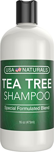 Tea Tree Oil Shampoo Sulfate-Free: Revitalize Hair, Combat Hair Loss and Cleanse Scalp with Naturally-Sourced Ingredients - Pure Tea Tree Oil, Organic Argan Oil, Organic Green Tea (Tea Tree Shampoo) by USA Naturals (Image #7)