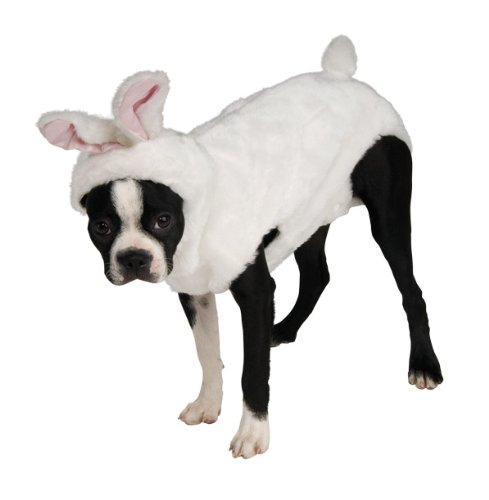 Misc Costume Ideas (Rubie's Pet Costume, X-Large, Bunny Hoodie)
