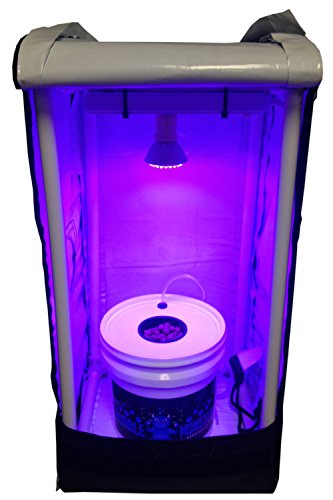 Hydroponic Grow Room - Complete Grow System - DWC Hydroponic Kit by Abbaponics