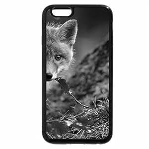 iPhone 6S Plus Case, iPhone 6 Plus Case (Black & White) - bright sunshine over foggy fields