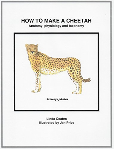 How to Make a Cheetah: Anatomy, Physiology and Taxonomy - Kindle ...
