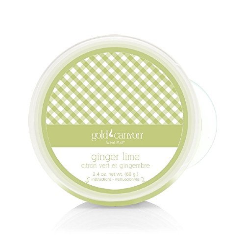 Scent Pod Wickless Candle - Gold Canyon Candles (Ginger Lime)