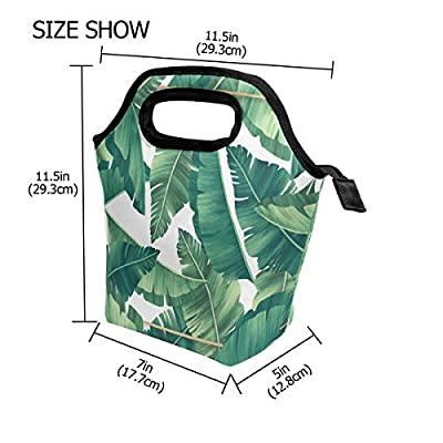 Lunch Bag Tropical Leaveswith Golden Frame Insulated Lunchbox Thermal Portable Handbag Food Container Cooler Reusable Outdoors Travel Work School Lunch Tote: Kitchen & Dining