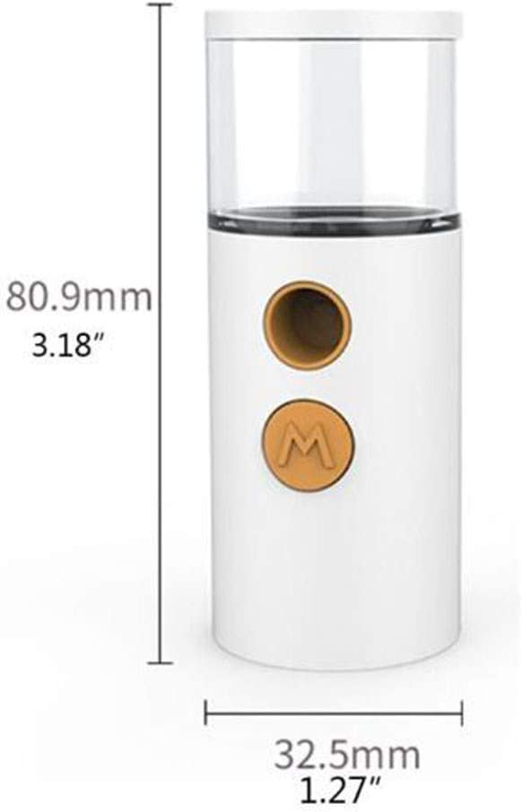 TSTYS Portable USB charging nano convenient moisturizing spray alcohol spray ultrasonic facial cleansing skin care multi-function automatic moisturizing Color : White