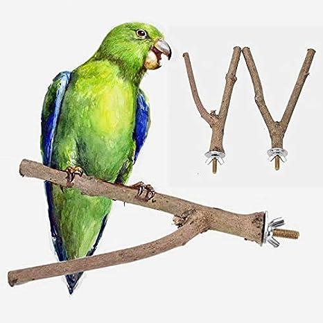 Amazon.com: Raw - Perchero de madera para mascotas con forma ...