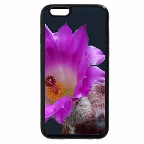 iPhone 6S / iPhone 6 Case (Black) Purple Cactus Flower