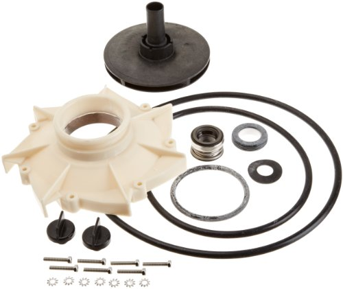 Pentair PP3012 Overhaul Replacement Kit Sta-Rite Pool and Spa -