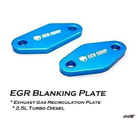 Amazon.com: Isuzu Dmax Holden Rodeo 2.5Liter Turbo Diesel EGR Block Blanking plate: Automotive