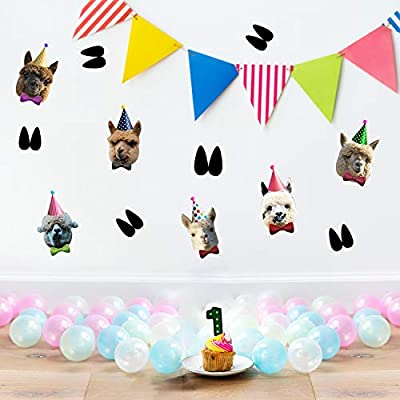 Llama Birthday Banner Llama Faces Party Garland Llama Theme Birthday Hanging Banner Llama Bunting Party Decorations: Home & Kitchen