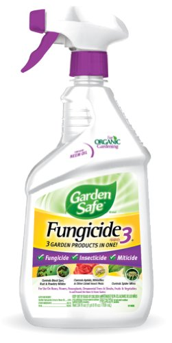 Fungicide 3 Garden Safe (Garden SafeFungicide3(Ready-to-Use) (HG-10414X) (Pack of 6))
