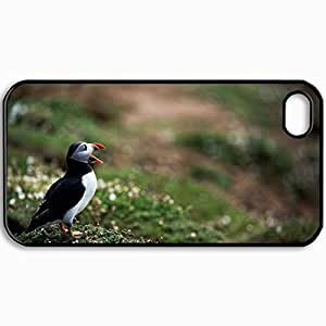 Personalized Protective Hardshell Back Hardcover For iPhone 4/4S, Deadlock Birds Grass Beak Design In Black Case Color