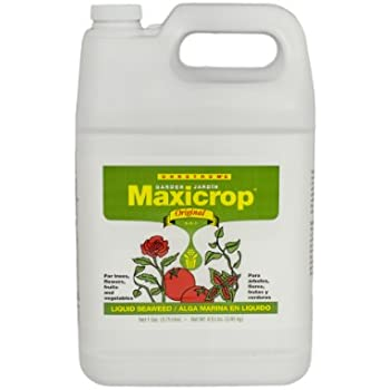 Maxicrop liquid fish fertilizer gallon for Liquid fish fertilizer