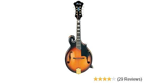 Amazon com: Ibanez M522SBS F-Style Mandolin, Brown Sunburst High