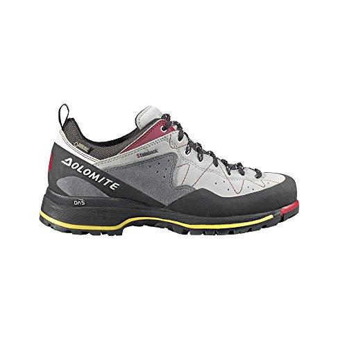 DOLOMITE Steinbock Approach GTX Hommes Chaussures Gris 85565400049