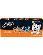 CESAR Classic Loaf in Sauce Wet Dog Food