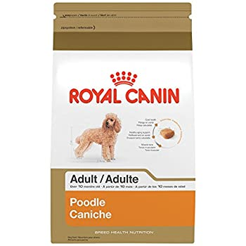 Royal Canin Breed Health Nutrition Poodle Adult Dry Dog Food, 10-pound 0