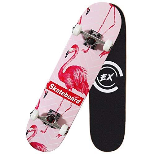 Pro Skateboard 31 X