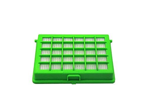 Green Label Filtro HEPA para Aspiradoras Rowenta y Moulinex Compacteo Ergo, City Space, Accessimo. Reemplaza a ZR004501