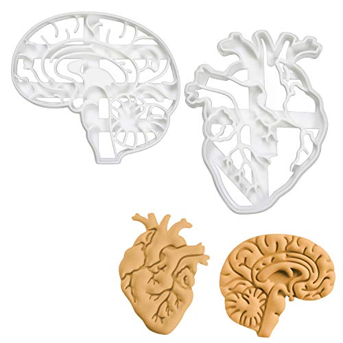 Set of 2 Anatomical Heart and Brain cookie cutters (Designs: Anatomical Brain and Heart), 2 pieces - Bakerlogy ()