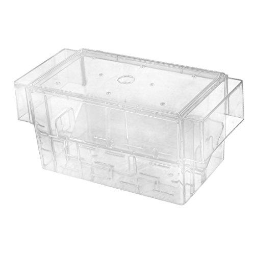 sourcing map Pecera Acuario Caja Criado de Alevines de Plástico Cuadro 16cm X 7,7cm X 7,5cm: Amazon.es: Productos para mascotas