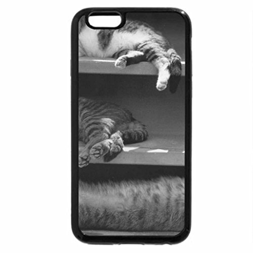 iPhone 6S Case, iPhone 6 Case (Black & White) - Cats napping on shelf