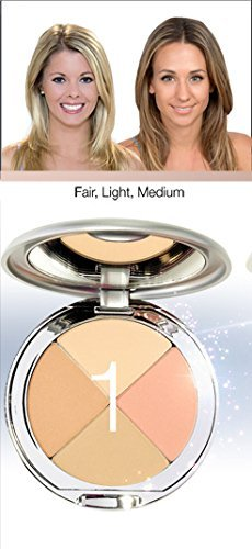 Perfect Pigment Cosmetics - Christina Cosmetics Perfect Pigment 1 Compact: One Minute Miracle Makeup