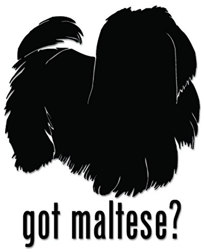 Got Maltese Dog Pet Vinyl Decal Sticker For Vehicle Car Truck Window Bumper Wall Decor - [6 inch/15 cm Tall] - Matte BLACK Color