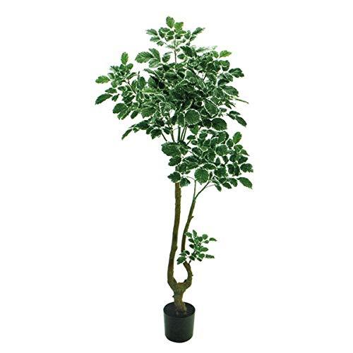 人工観葉植物 ポリシャスポット班入り 高さ180cm fg9069 (代引き不可) インテリアグリーン 造花 B07T12K575