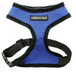 Freedog FD4003073 - Arnés Soft, para Perro, Color Azul: Amazon.es ...