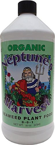 Neptune's Harvest SW118 Liquid Seaweed Plant Food 0-0-1, 16 Ounce