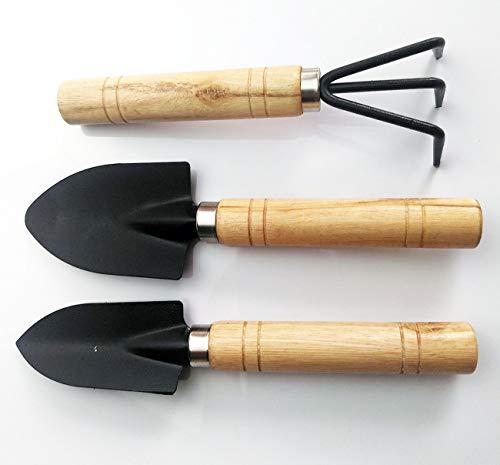Diligent Farmer Mini Garden Tool Set, 3 Piece Hand Suit Small Shovel/Rake/Spade Ideal for Men and Women