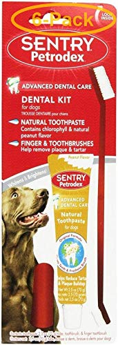 Sentry Industries Inc. Petrodex Dental Kit for Dogs - Peanut Butter Flavor 2.5 oz Toothpaste - 8.25'' Brush - Pack of 6 by Sentry Industries Inc.