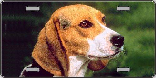 Beagle Dog Aluminum Automotive Novelty License Plate Tag (Beagle Fan)