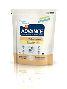 ADVANCE - ADVANCE KITTEN Pollo y arroz - 400 g: Amazon.es: Productos para mascotas