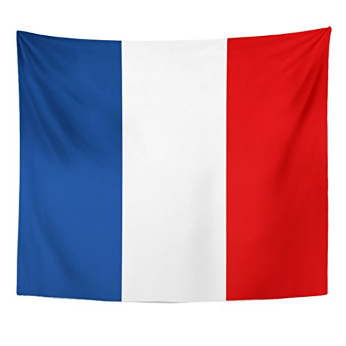 TOMPOP Tapestry Red French France Flag Accurate Area Color Correct Country Home Decor Wall Hanging for Living Room Bedroom Dorm 50x60 Inches
