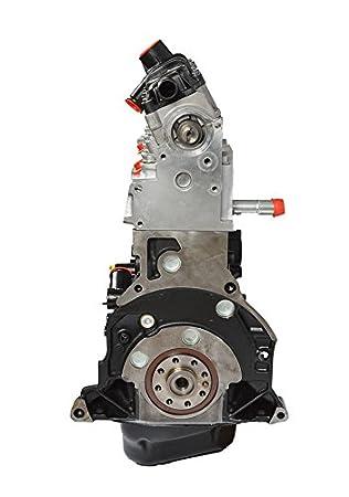 Motor Peugeot Citroen Fiat 1.9 D 69 - 70 CV código DW8 vendu Nu sin Inyección ni distribución ni Turbo: Amazon.es: Coche y moto