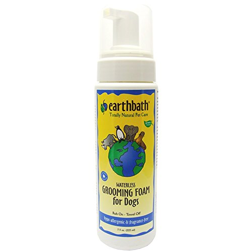 Earthbath Hypo-Allergenic Waterless Grooming Foam for Dogs, 8-Ounce