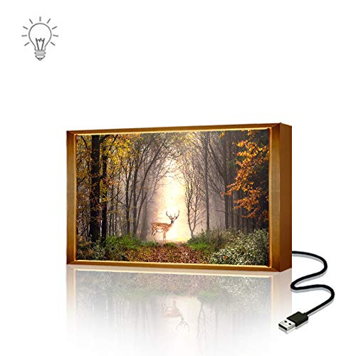 - Nanerdun LED Wall Decoration Artwork Lamp Elk Forest USB Interface Infrared Induction Decorative Painting Lamp Modern Home Decoration Art Miniature Spray Canvas Printing (8x12 inch with Frame)