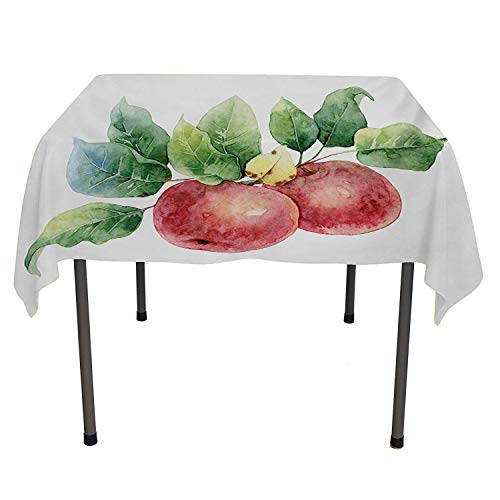 Apple Dinning Table Covers Watercolor Art Style Branch with Green Leaves and Ripe Organic Fruits Dark Coral Green White Everyday Table Cloth Spring/Summer/Party/Picnic 70 by 70