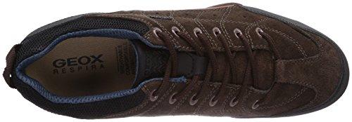 Geox UOMO SNAKE F - zapatilla deportiva de cuero hombre marrón - Braun (CHESTNUT/BLACKC6458)