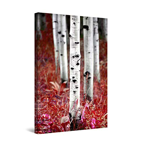 STARTONIGHT Canvas Wall Art - Aspen Forest Trees Family Nature, Framed 24 x 36 Inches