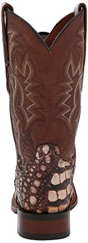 Dan Post Womens Everglades 2 Western Boot Cammello