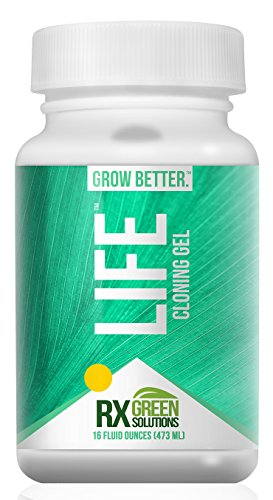 rx-green-solutions-life-cloning-gel-16-ounce