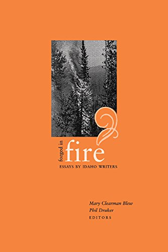 Man on fire essays